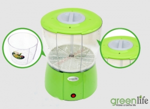 Trồng rau mầm chính hãng Green life của Hàn Quốc không cần đất, chất kích thích.